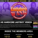 Ladyboy Wank Xxx Passwords