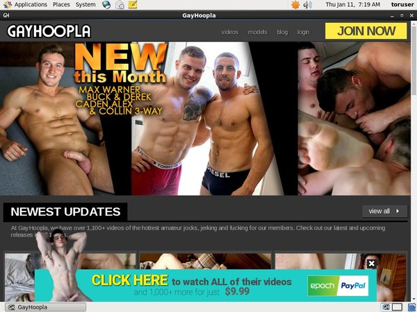 Free Acc For Gay Hoopla